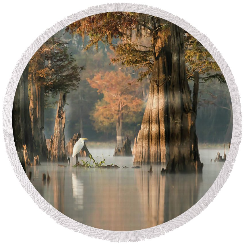 Swamp Round Beach Towel featuring the photograph Egret Enjoying Foggy Morning In Atchafalaya by Theresa Mullins Low