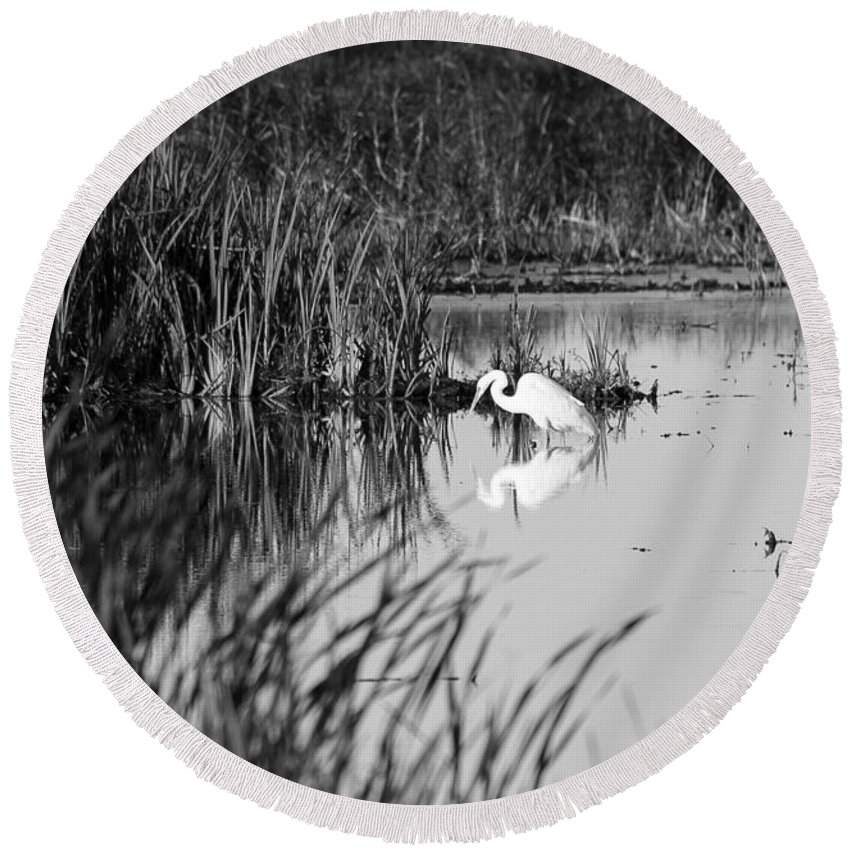 Birds Round Beach Towel featuring the photograph Egret - Horicon Marsh - Wisconsin by Steven Ralser
