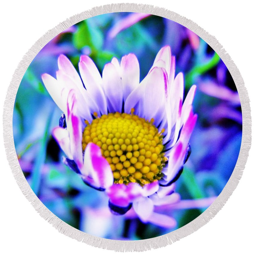 Flower Round Beach Towel featuring the photograph Electric Daisy by Zen WildKitty