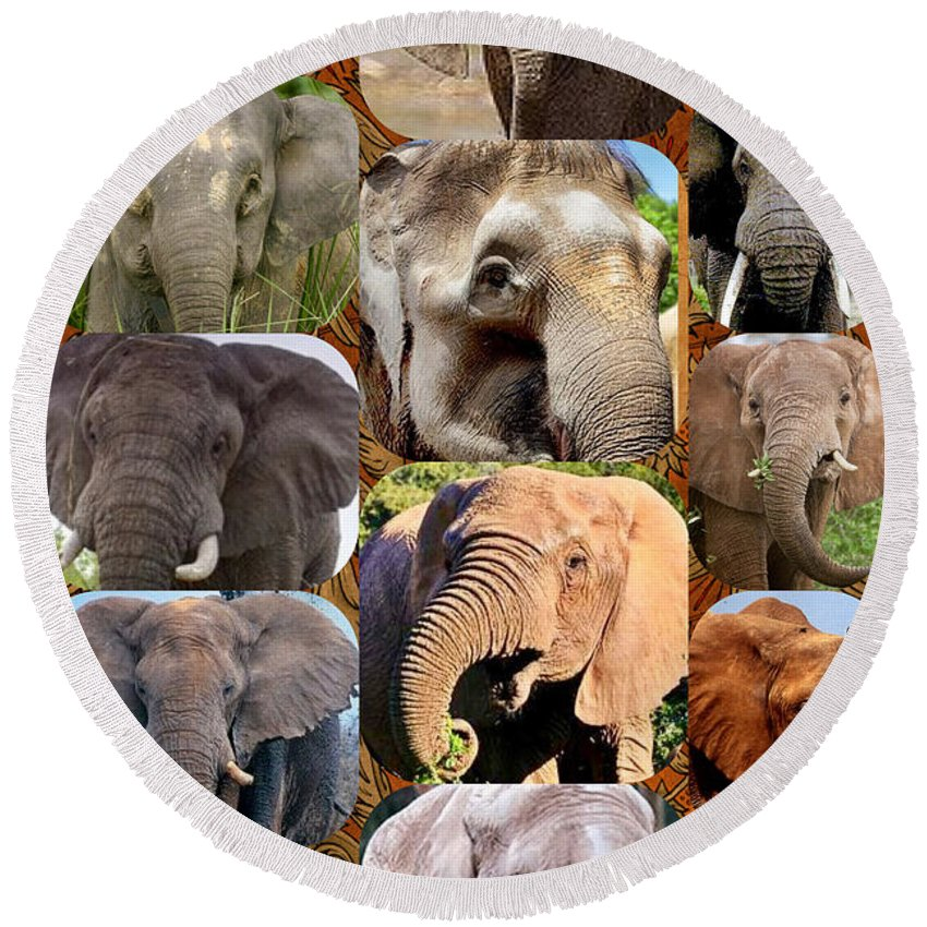 Round Beach Towel featuring the photograph Elephant Faces by Miriam Marrero