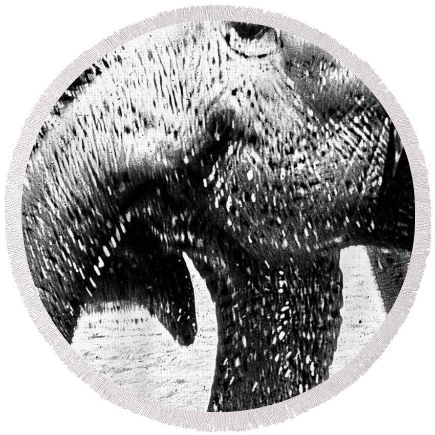 Elephants Round Beach Towel featuring the digital art Elephant Gossip by Cathy Anderson