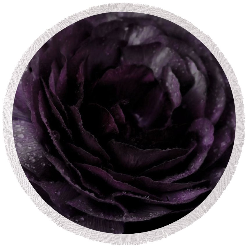 Purple Round Beach Towel featuring the photograph Emily's Great Ant Thingy Flower..... by September Stone