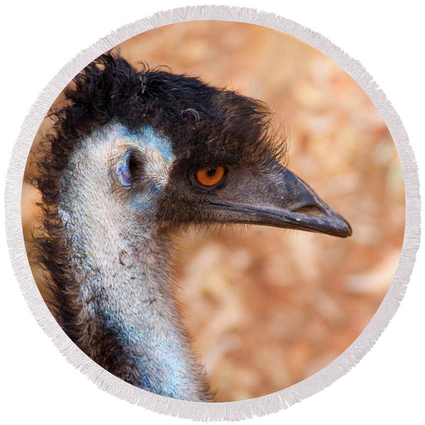 Emu Round Beach Towel featuring the photograph Emu Profile by Mike Dawson