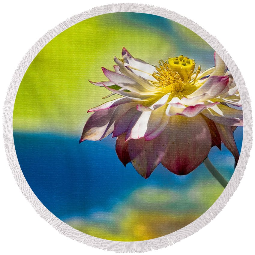 Lotus Round Beach Towel featuring the photograph End Of Summer Lotus by Chris Lord