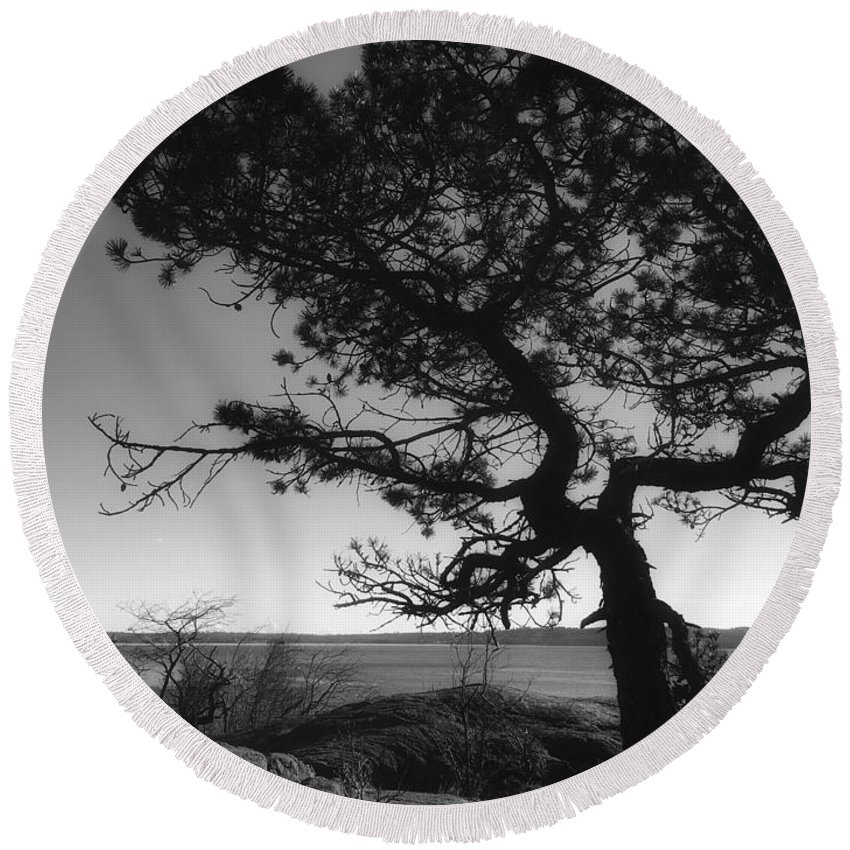 Connie Handscomb Round Beach Towel featuring the photograph Endurance by Connie Handscomb
