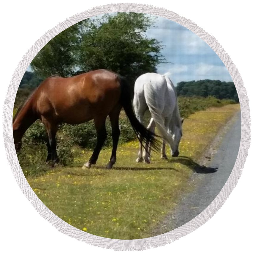 Wild Horses And Ponies Roam Free In The New Forest Round Beach Towel featuring the photograph England - Wild Horses by Jeffrey Shaw