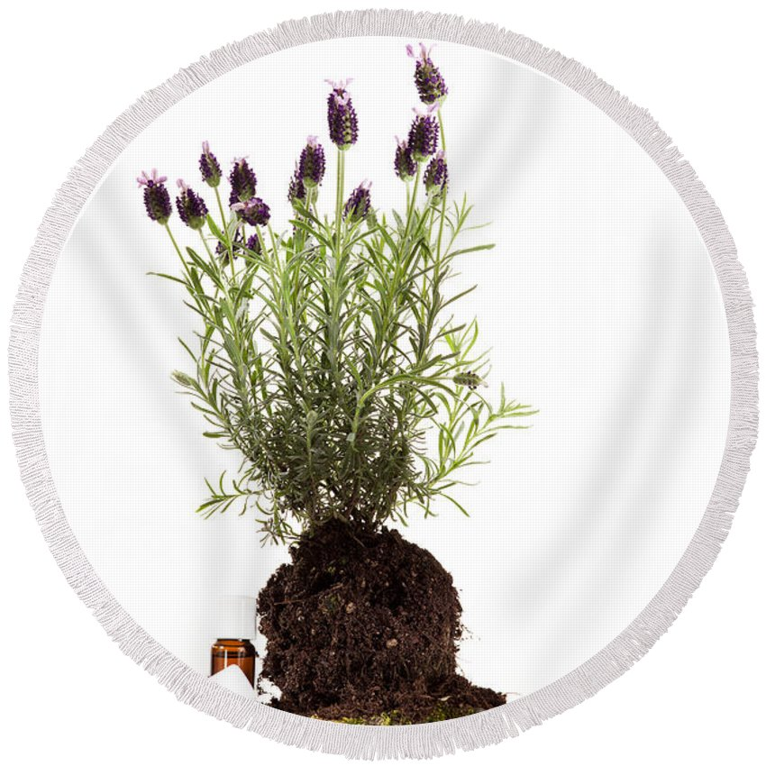 Ethereal Round Beach Towel featuring the photograph Essential Oil Of Spanish Lavender by Wolfgang Steiner