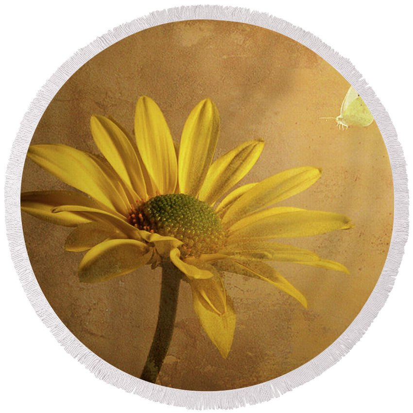 Daisy Round Beach Towel featuring the photograph Expectant by Lois Bryan
