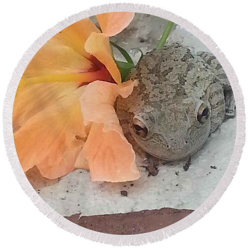 Toad Round Beach Towel featuring the photograph F by Michelle S White
