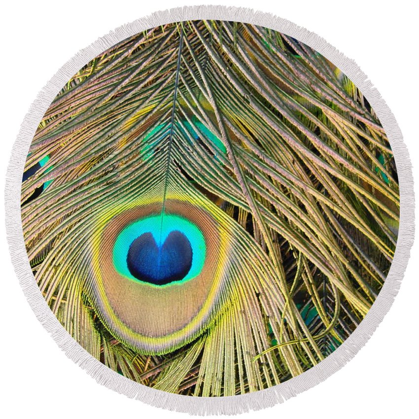 Peacock Round Beach Towel featuring the photograph Fabulous Feathers by Margaret Bobb