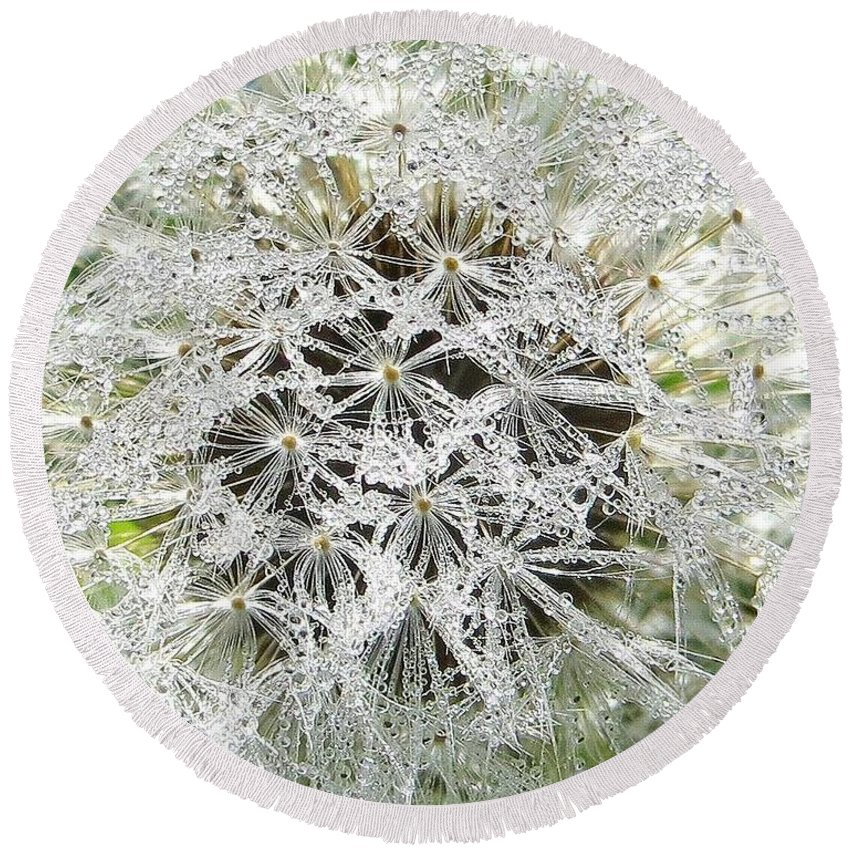 Dandelion Round Beach Towel featuring the photograph Fairy Crystals by Adrian Cooch
