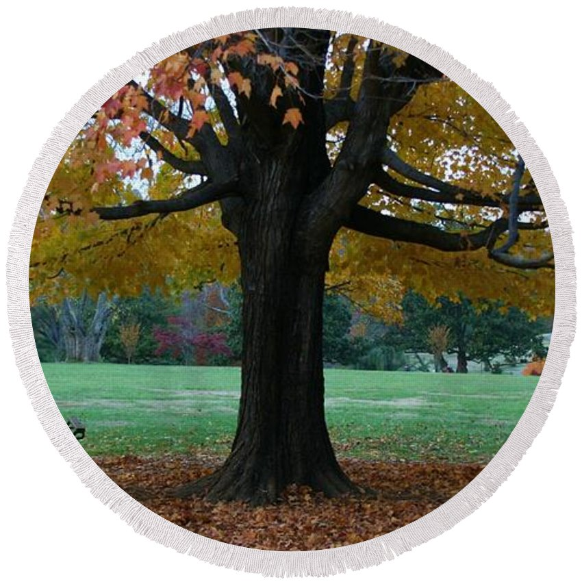 Maymont Round Beach Towel featuring the photograph Fall At Maymont by Tina Meador