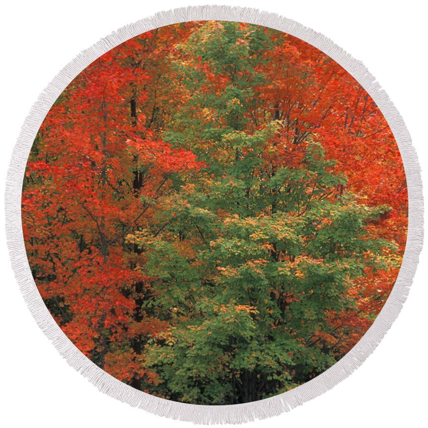 Door County Round Beach Towel featuring the photograph Fall Brilliance by Sandra Bronstein