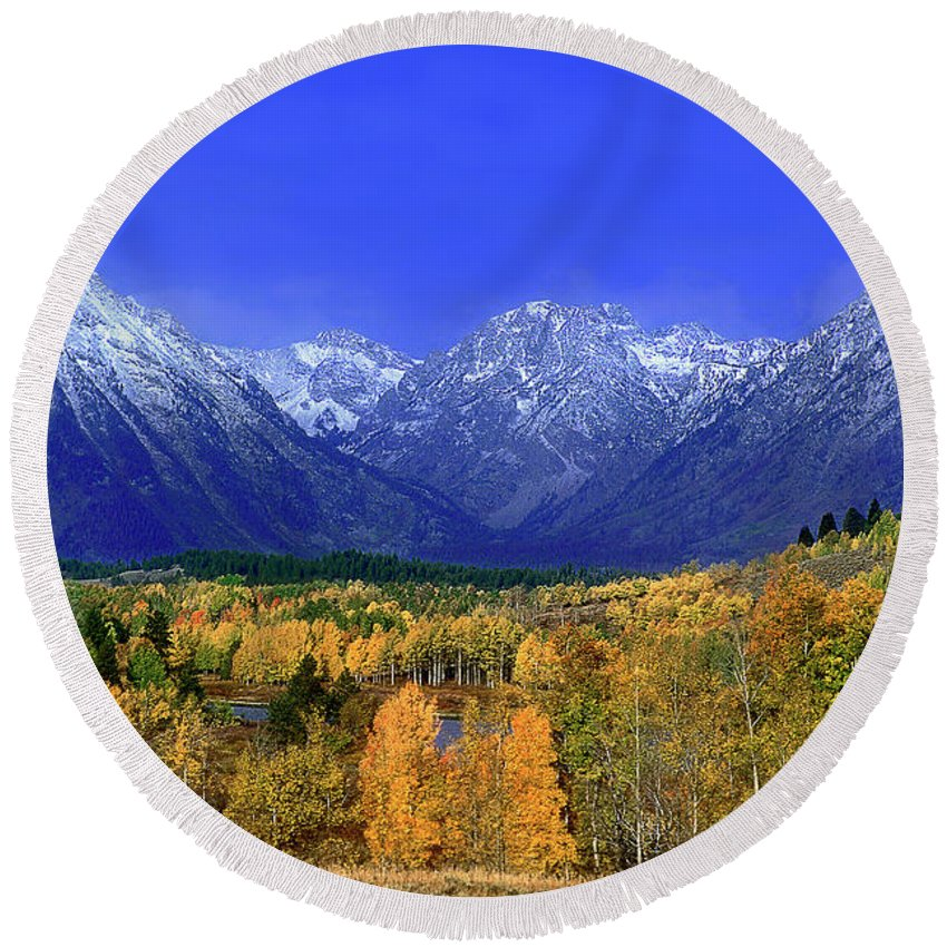 Grand Tetons National Park Round Beach Towel featuring the photograph Fall Colored Aspens Grand Tetons Np by Dave Welling
