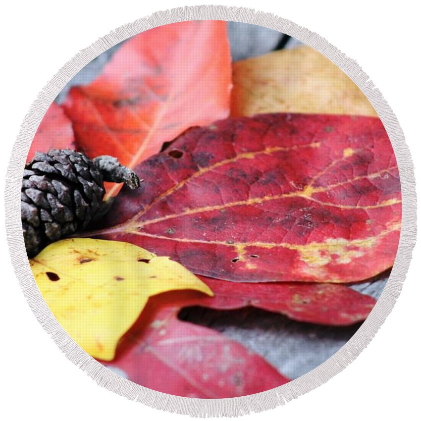 Leaf Round Beach Towel featuring the photograph Fall Colors by Wendy Gertz