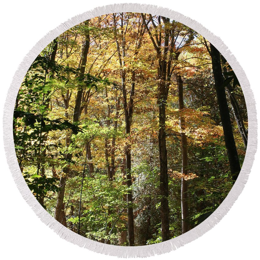 Fall Round Beach Towel featuring the photograph Fall Forest 2 by William Selander