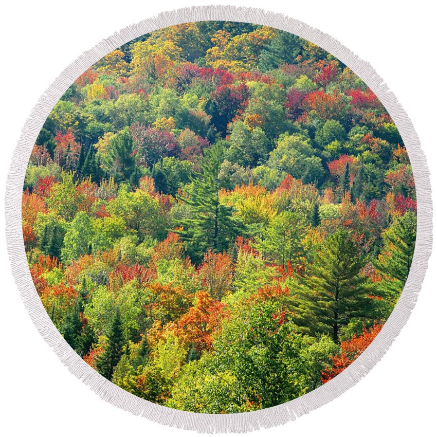 Adirondack Mountains Round Beach Towel featuring the photograph Fall Forest by David Lee Thompson