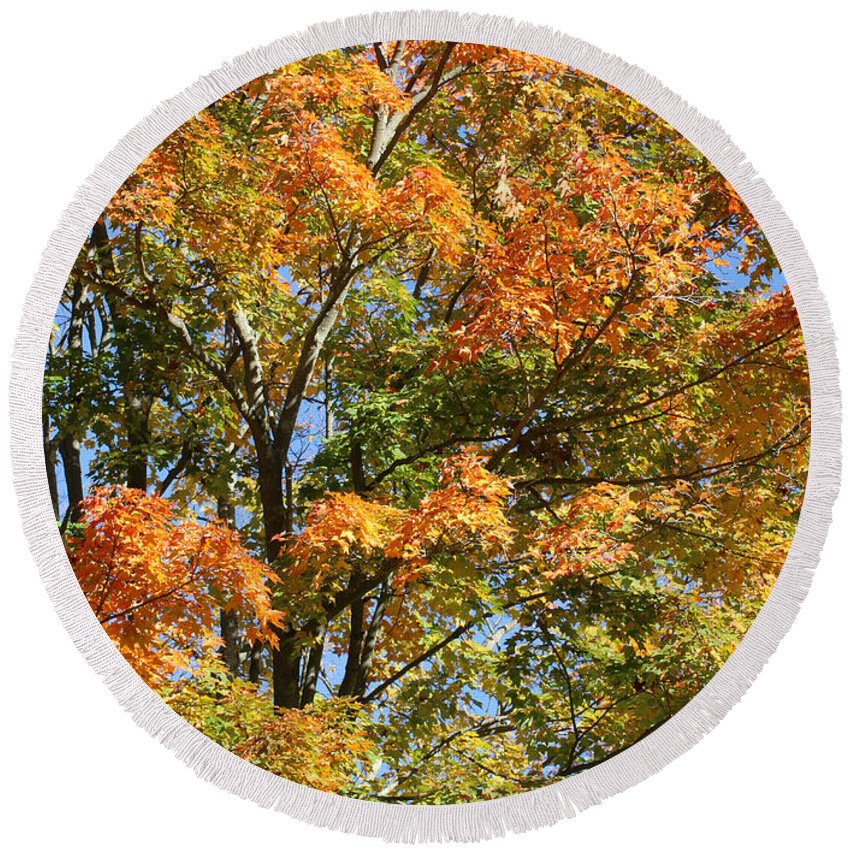 Autumn Round Beach Towel featuring the photograph Fall Gradient by William Selander