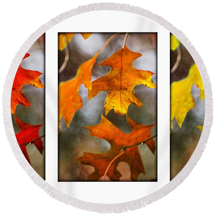 Leaves Round Beach Towel featuring the photograph Fall Leaves by Jill Reger
