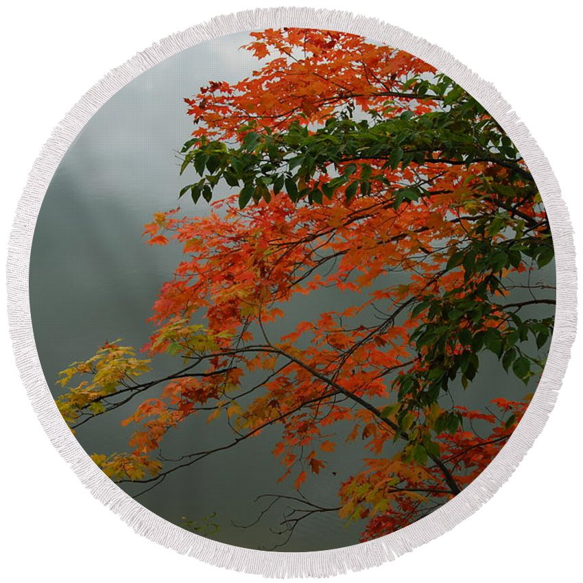 Trees Round Beach Towel featuring the photograph Fall by Michelle Hastings