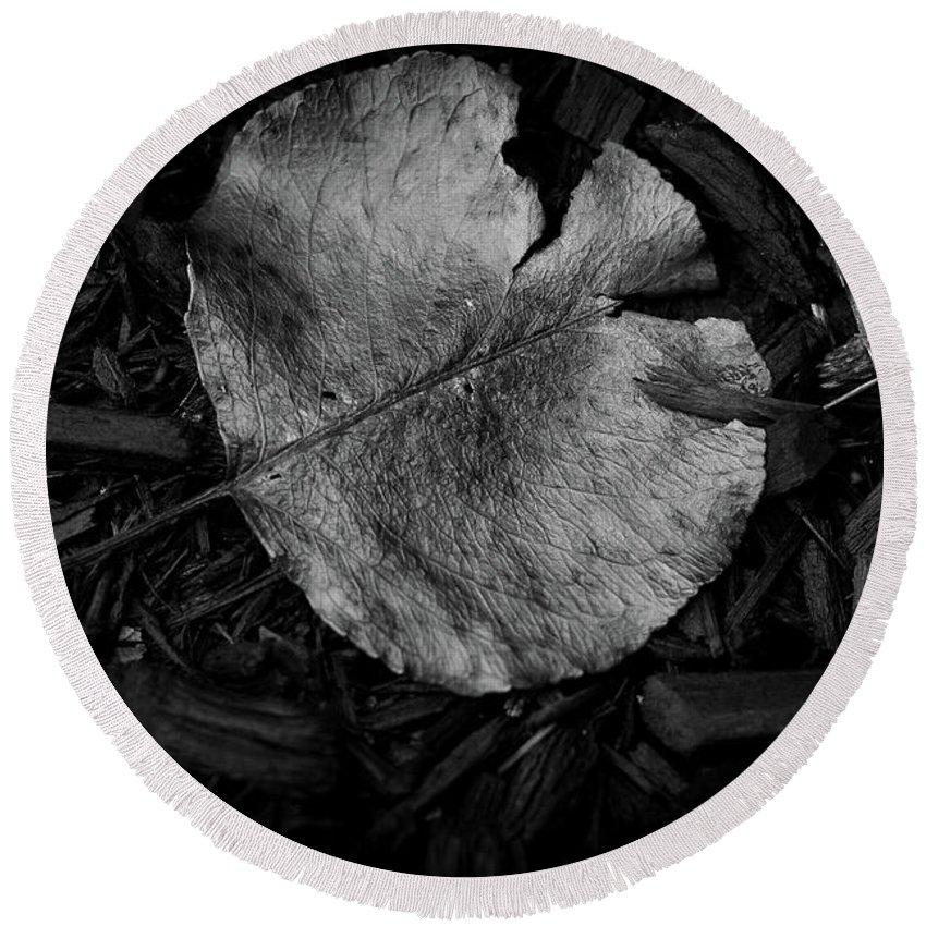 Autumn Round Beach Towel featuring the photograph Fallen Leaves by Jonas Ogrefoln