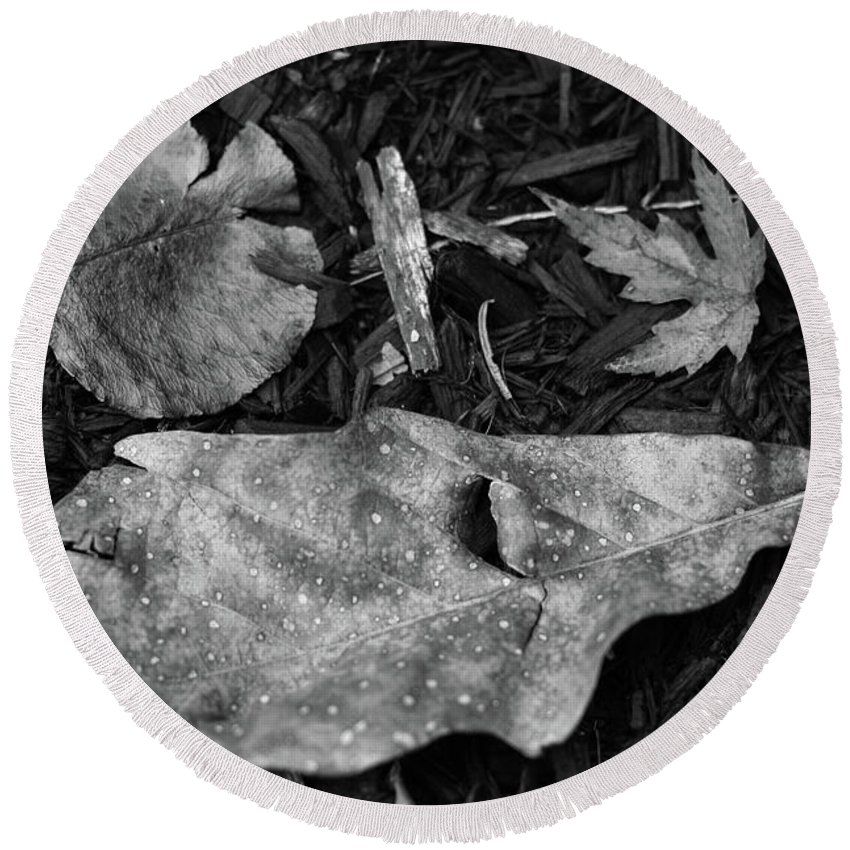 Autumn Round Beach Towel featuring the photograph Fallen Leaves Revisited by Jonas Ogrefoln