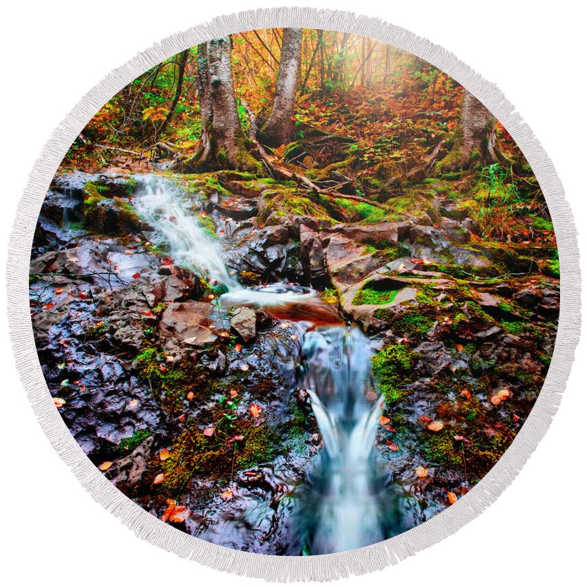 Minnesota Round Beach Towel featuring the photograph Fantasy Forest by Rikk Flohr