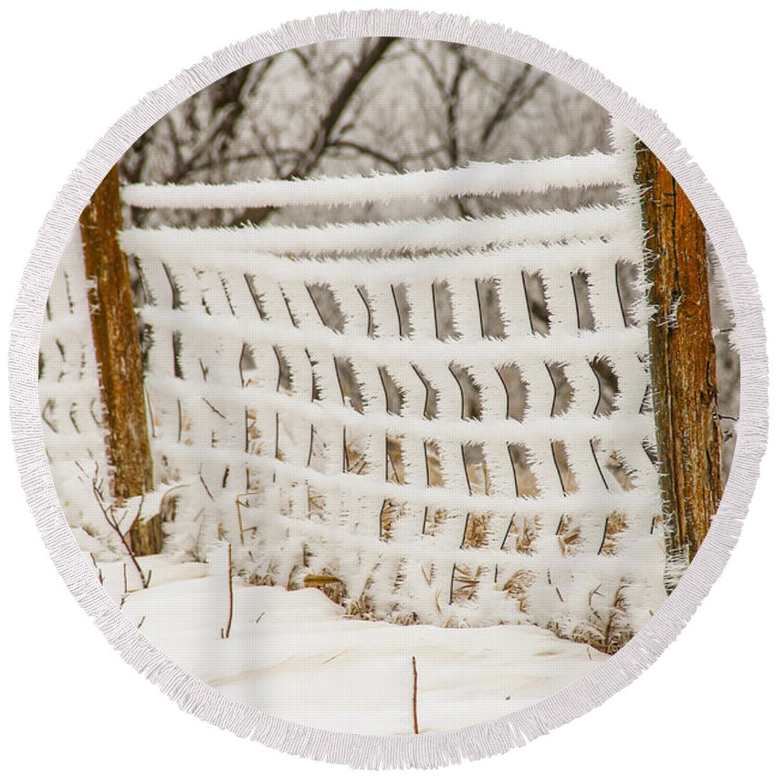 Frost Round Beach Towel featuring the photograph Feather Dusted by Peter Bouman