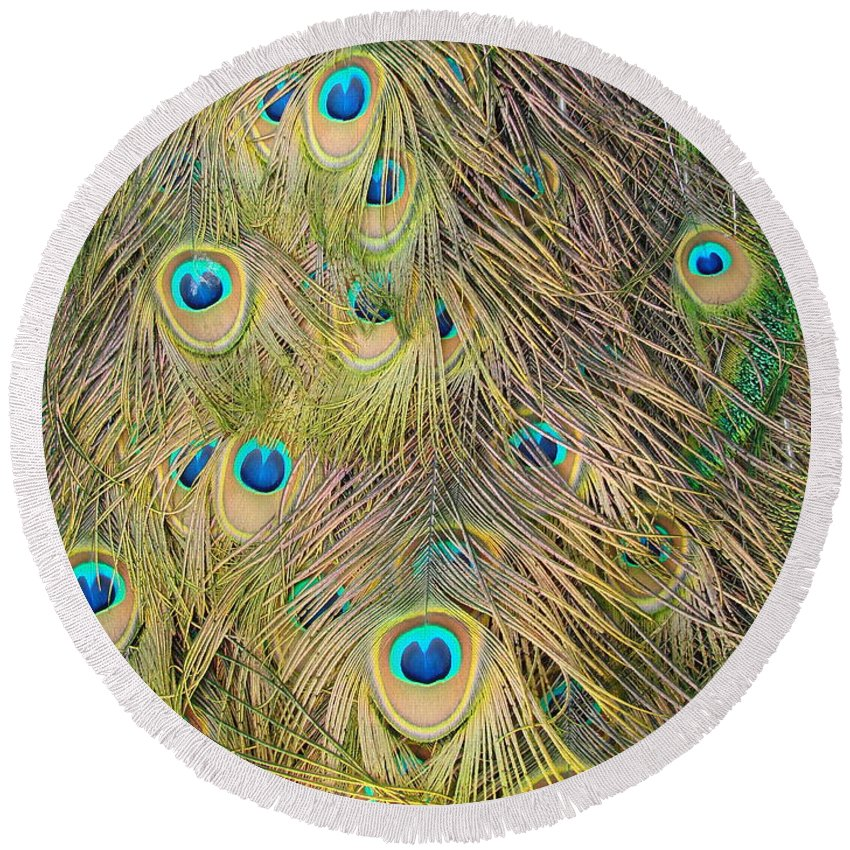 Peacock Round Beach Towel featuring the photograph Feather Finesse by Margaret Bobb