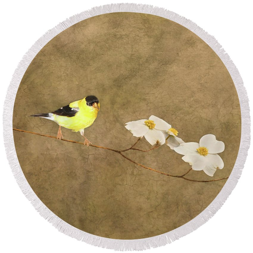 American Goldfinch Round Beach Towel featuring the photograph Feathers And Petals I by Leda Robertson