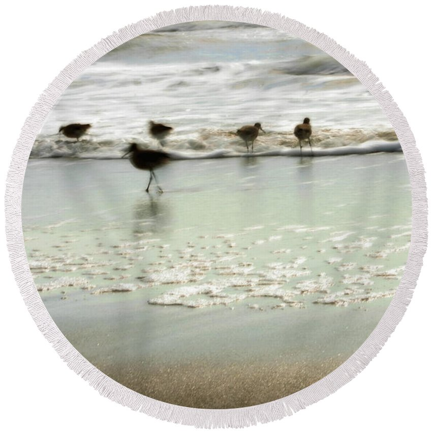 Blue Round Beach Towel featuring the photograph Plundering Plover Series 2 by Angela Rath