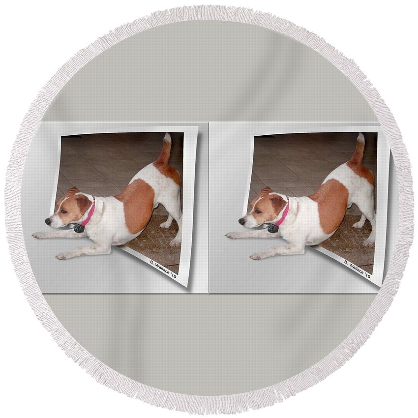 3d Round Beach Towel featuring the photograph Feeling Frisky - Cross Your Eyes And Focus On The Middle Image by Brian Wallace