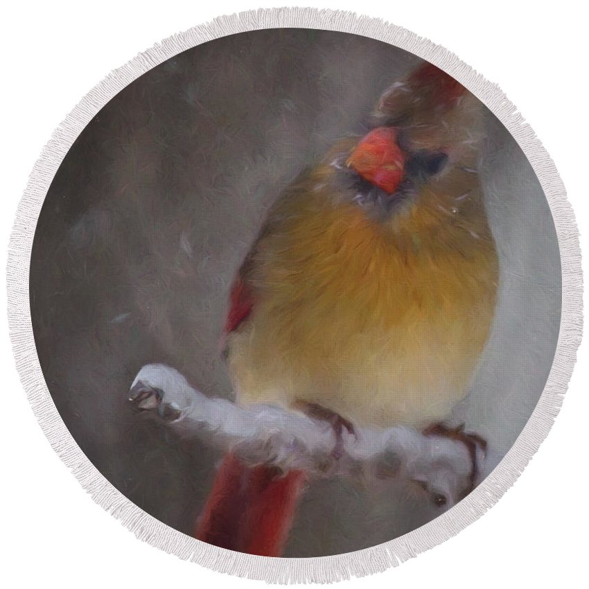 Animal Round Beach Towel featuring the photograph Female Cardinal In The Winter by Lana Trussell