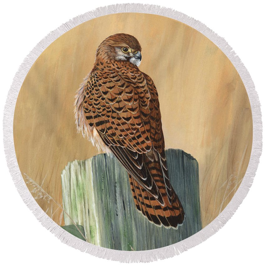 Kestrel Round Beach Towel featuring the painting Female Kestrel Study by Mike Woodcock