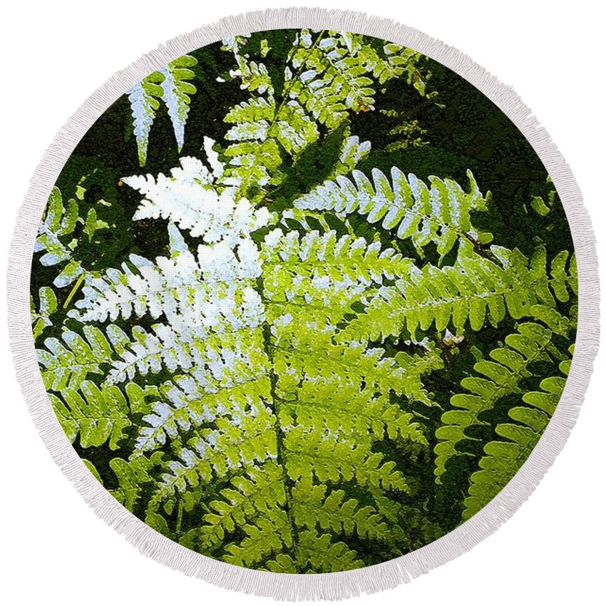 Ferns Round Beach Towel featuring the photograph Ferns by Nelson Strong