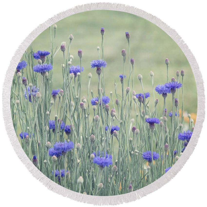 Flower Round Beach Towel featuring the photograph Field Of Bachelor Buttons by Kim Hojnacki