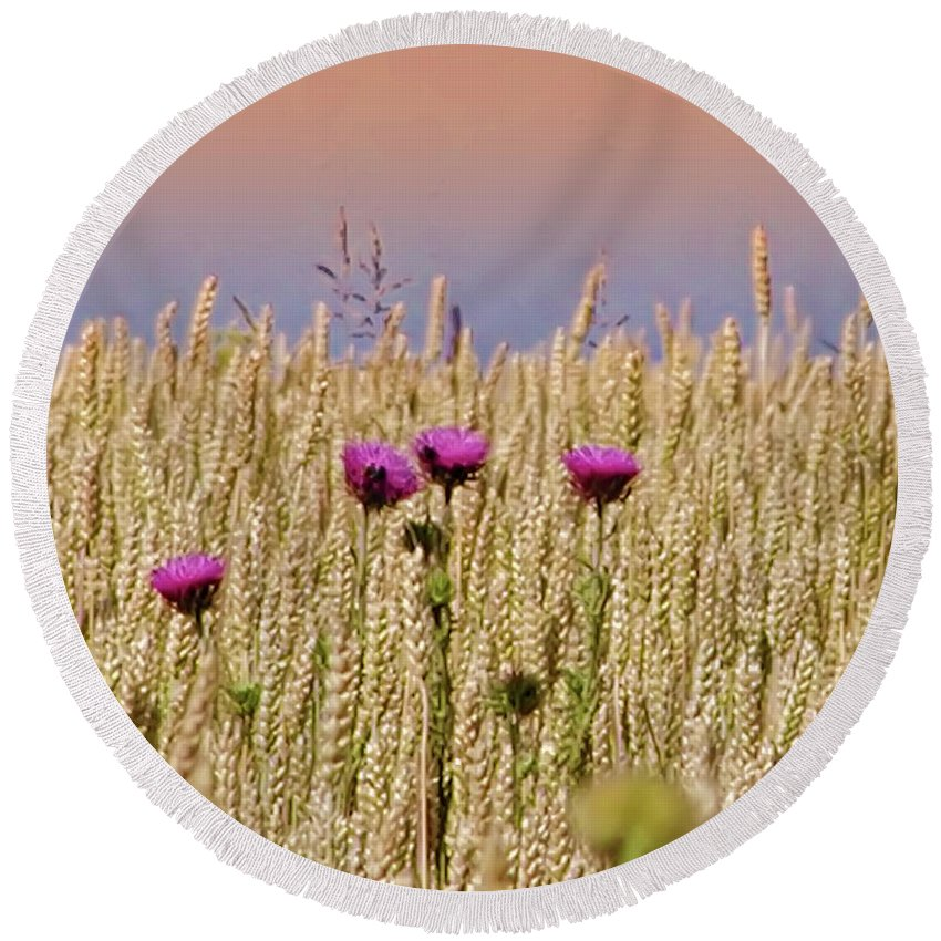 Field Round Beach Towel featuring the photograph Field Of Dreams by Bill Cannon
