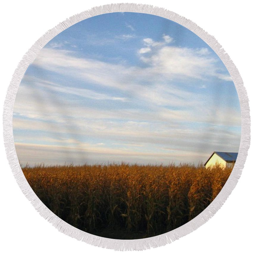 Country Round Beach Towel featuring the photograph Fields Of Gold by Rhonda Barrett
