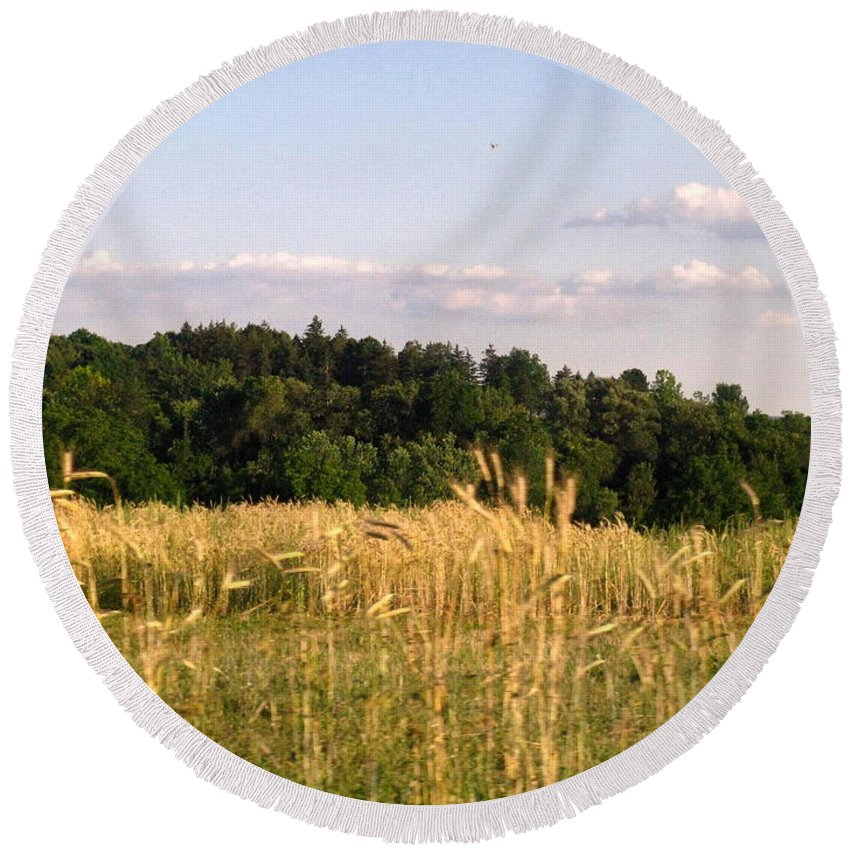 Field Round Beach Towel featuring the photograph Fields of Grain by Rhonda Barrett