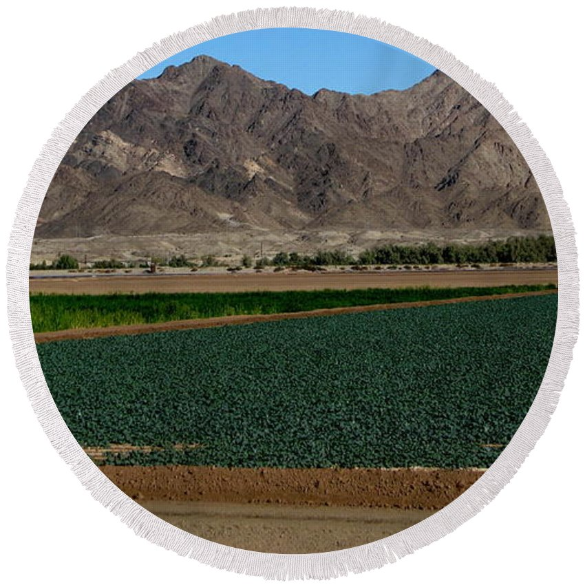 Patzer Round Beach Towel featuring the photograph Fields Of Yuma by Greg Patzer