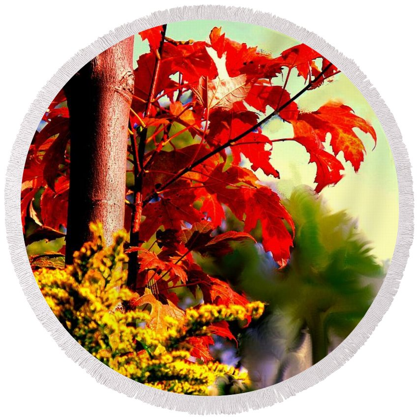 Red Round Beach Towel featuring the photograph Fiery Red Autumn by Ian MacDonald