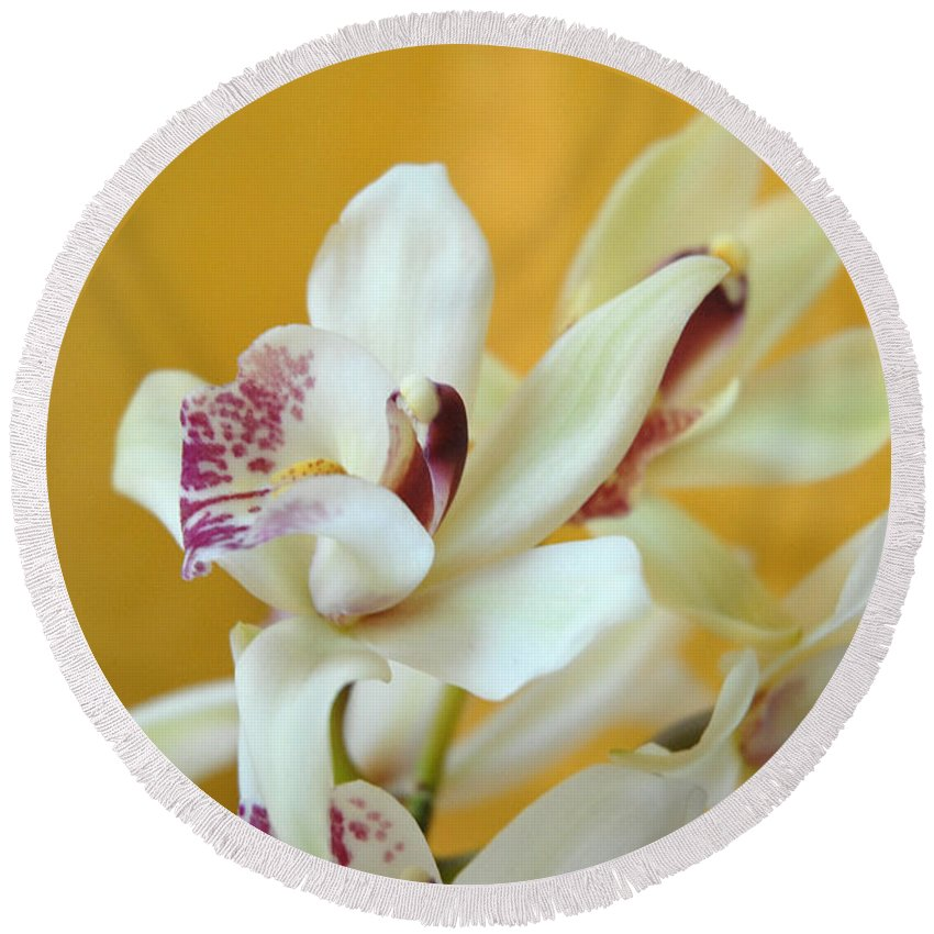 Fine Art- Orchid By Jenny Potter Round Beach Towel featuring the photograph Fine Art- Orchid by Jenny Potter