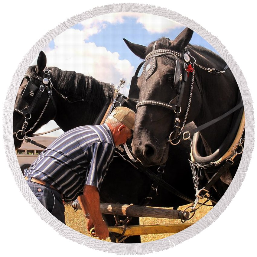Horses Round Beach Towel featuring the photograph Fine Tuning by Ian MacDonald