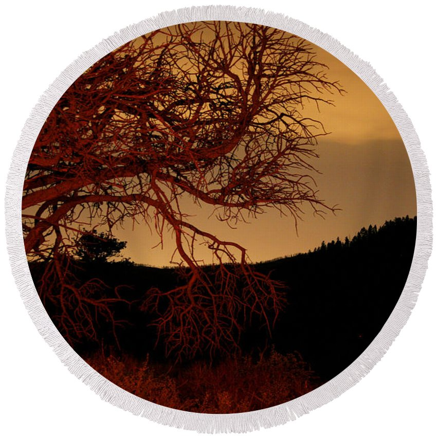 Landscape Round Beach Towel featuring the photograph Fire Tree by Jeffery Ball