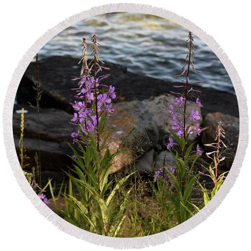 Flowers Round Beach Towel featuring the photograph Fire Weed Looking At Lake Superior by Hella Buchheim