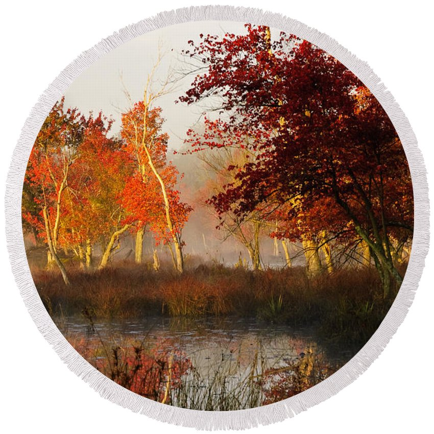 Landscape Round Beach Towel featuring the photograph First Light At The Pine Barrens by Louis Dallara