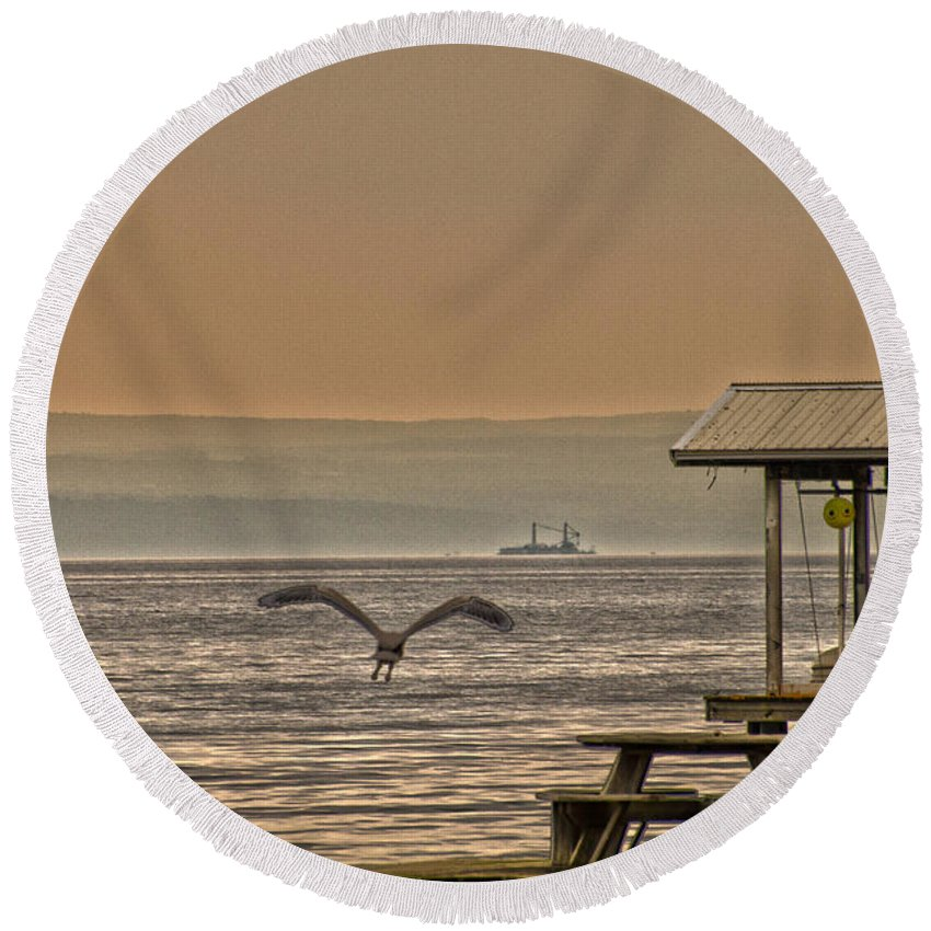 Water Round Beach Towel featuring the photograph Fish Patrol by William Norton