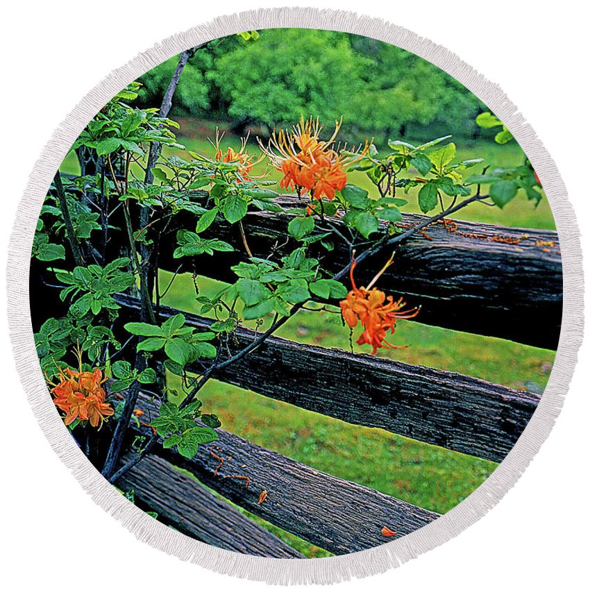 Virginia Round Beach Towel featuring the photograph Flame Azalea And Fence by Rich Walter