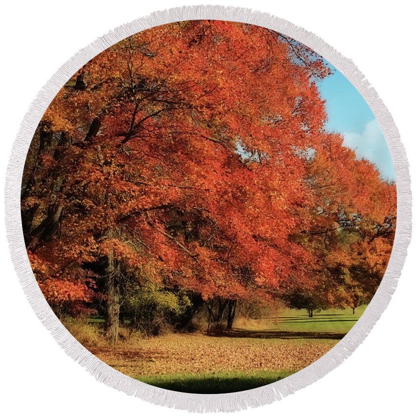 Autumn Round Beach Towel featuring the photograph Flame Trees by Lois Bryan