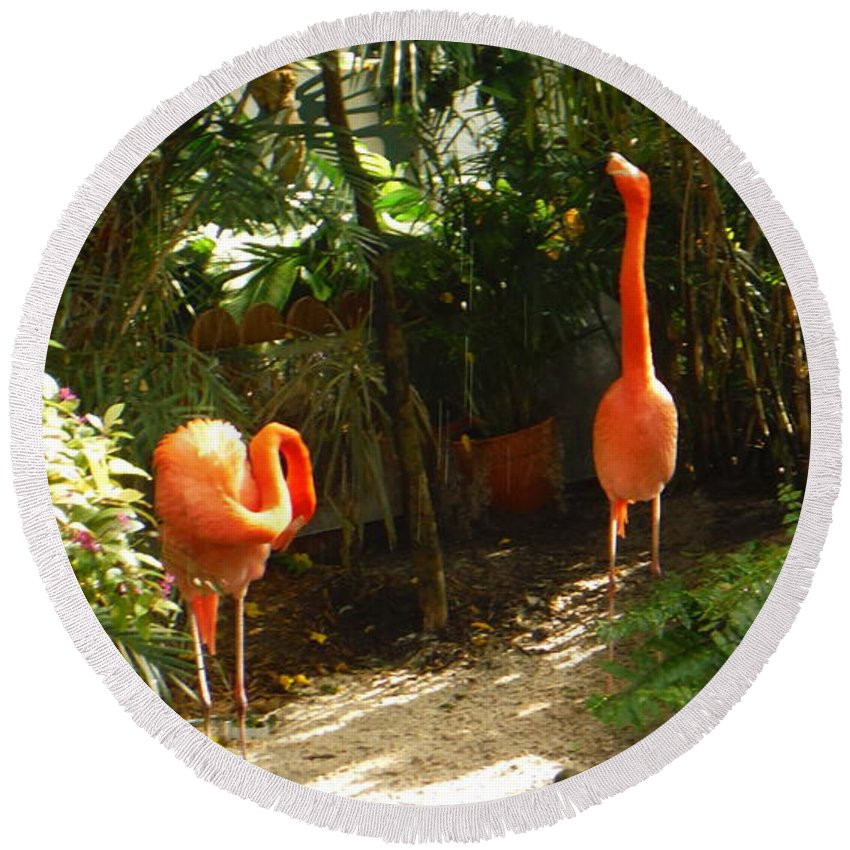 Flamingo Round Beach Towel featuring the photograph Flamingo Duo by Jacqueline Whitcomb